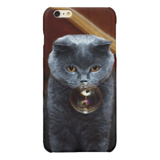 The grey cat British breed with large yellow eyes iPhone 6 Plus Case