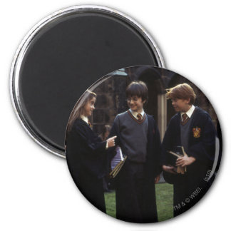 The group outside of Hogwarts 6 Cm Round Magnet