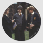 The group outside of Hogwarts Classic Round Sticker
