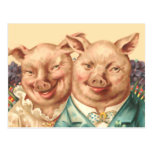 The Handsome Pig Couple