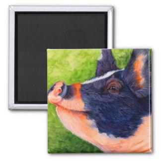 The Happy Hog - Pig Magnet