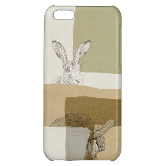 The Hare and the Tortoise An Aesop's Fable Case For iPhone 5C