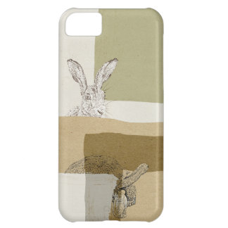 The Hare and the Tortoise An Aesop's Fable iPhone 5C Case