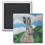 The Hare Magnet