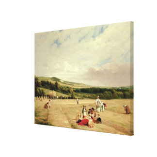 The Harvest Field (oil on canvas) Canvas Print