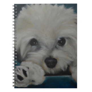 The Havanese Spiral Note Book