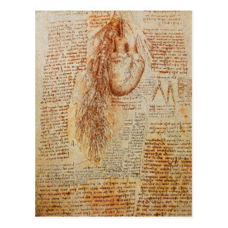 The Heart and the Bronchial Arteries Parchment Postcard