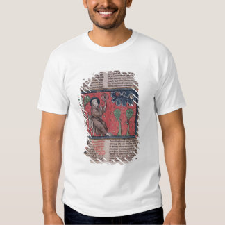 The Heavens, from 'De Natura rerum' T-shirts