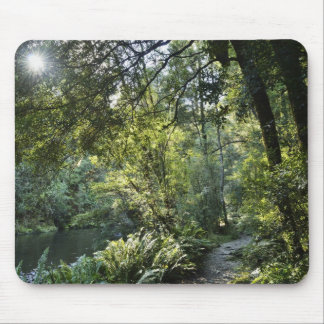 The Hellyer River flows peacefully through a 2 Mouse Mat