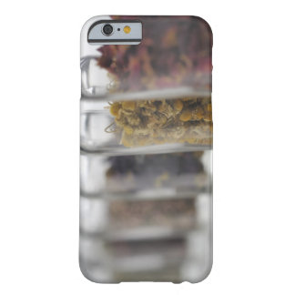 The herbs which a glass bottle contains barely there iPhone 6 case