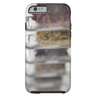 The herbs which a glass bottle contains tough iPhone 6 case