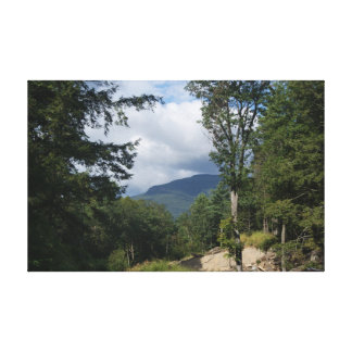 The hills are alive. stretched canvas print