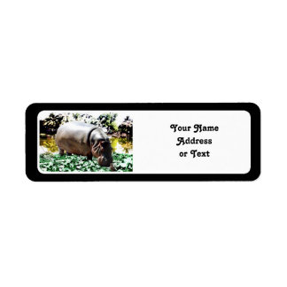 The Hippo And The Bird Return Address Label