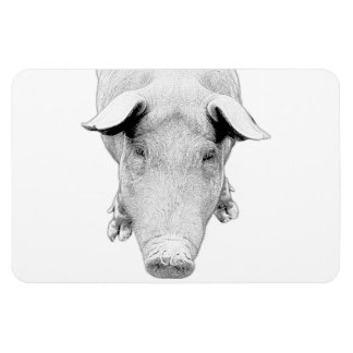 The Hog in Black and White Rectangular Photo Magnet