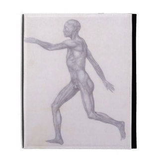 The Human Figure, lateral view, from the series 'A iPad Cases