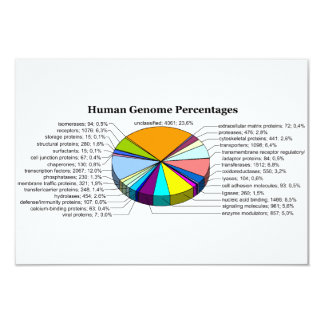 The Human Genome with Number and Percent of Each 9 Cm X 13 Cm Invitation Card