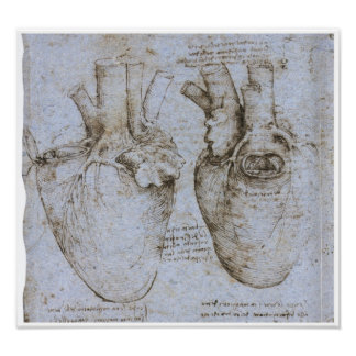 The Human Heart, Leonardo da Vinci Posters