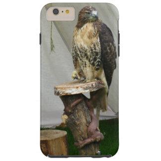 The hunt falcon
