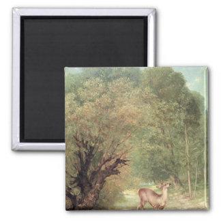 The Hunted Roe-Deer on the alert, Spring, 1867 Magnet