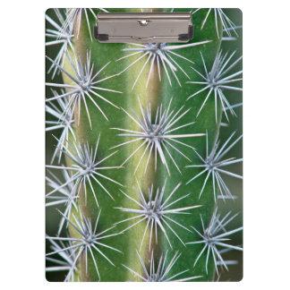 The Huntington Botanical Garden, Octopus Cactus Clipboard