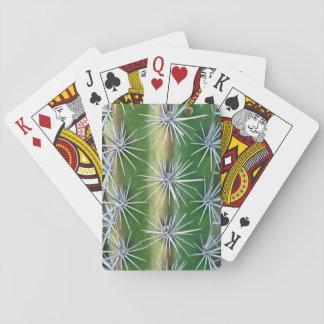 The Huntington Botanical Garden, Octopus Cactus Playing Cards