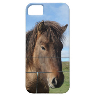 The Icelandic Horse - A Real Friend Barely There iPhone 5 Case