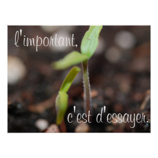 The important thing is to try-Motivational Poster