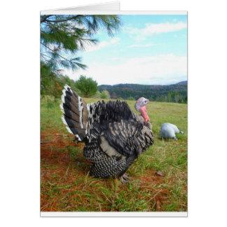 The Incredible Turkeys Card