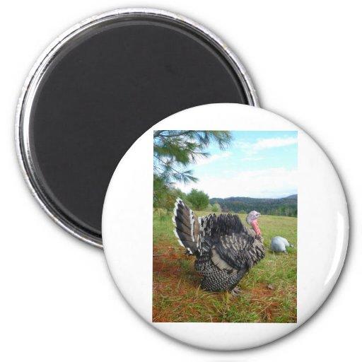 The Incredible Turkeys Refrigerator Magnet