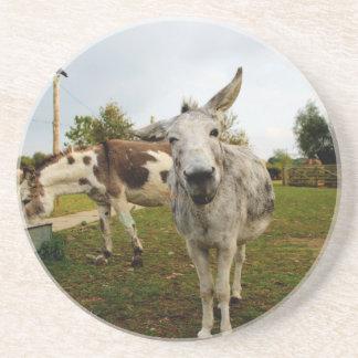 The inquisitive Donkey Coaster
