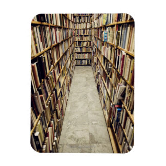 The interior of a second-hand bookshop Sweden. Magnet