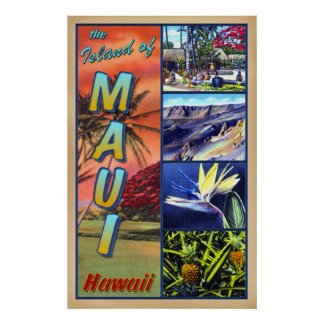The Island of Maui Hawaii Poster