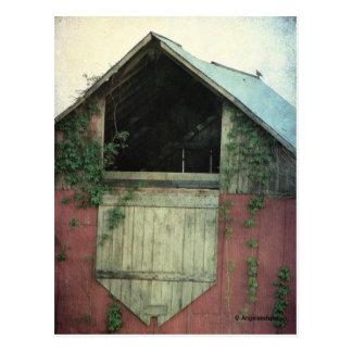 The Ivy Barn Postcard
