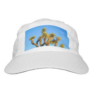 The Joshua Tree Hat