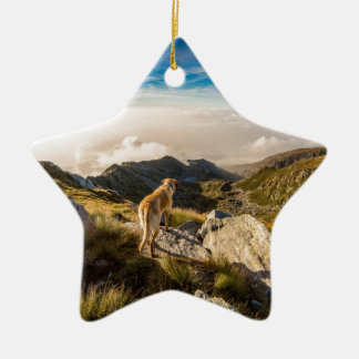 The journey christmas ornament