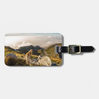 The journey luggage tag