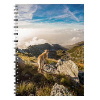 The journey spiral note book