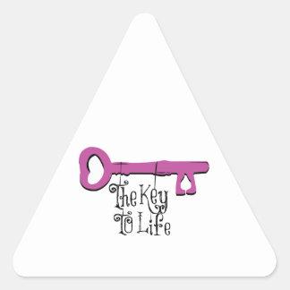 The Key To Life Triangle Sticker
