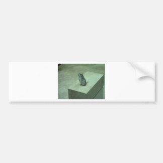 The Killer Mouse Onychomys leucogaster howls Bumper Sticker