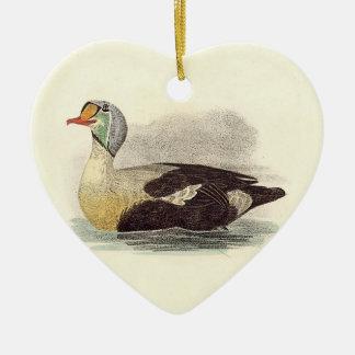 The King Duck(Fuligula spectabilis) Christmas Ornament