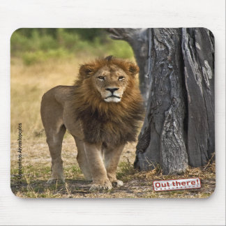 The king mouse mat
