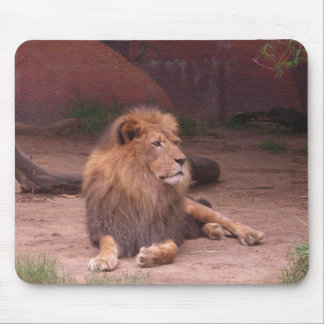 The King of the Jungle Mouse Mat