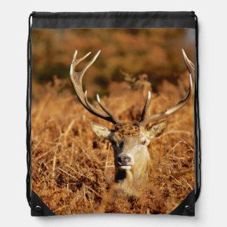 The King's Deer, red deer stags 1 Drawstring Bag