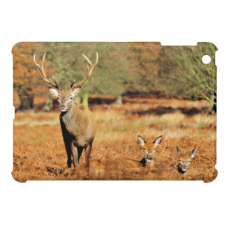 The King's Deer, red deer stags 2 Case For The iPad Mini
