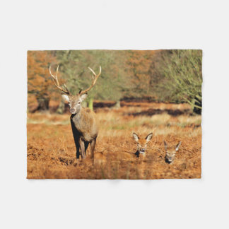 The King's Deer, red deer stags 2 Fleece Blanket