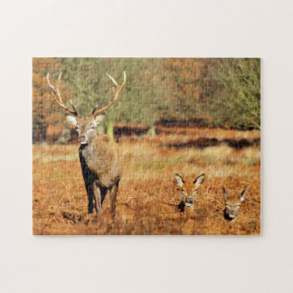 The King's Deer, red deer stags 2 Jigsaw Puzzle