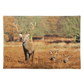 The King's Deer, red deer stags 2 Placemat