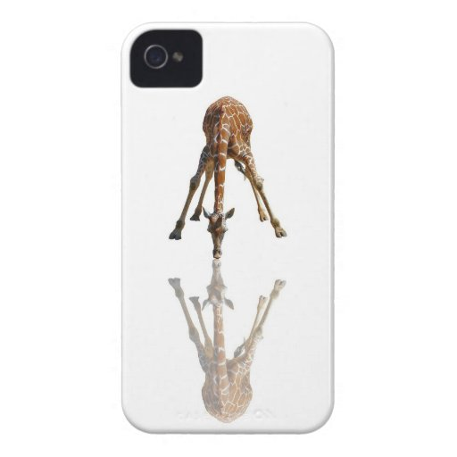 THE KISS BLACKBERRY BOLD CASES