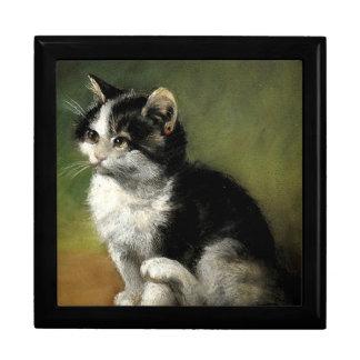 The Kitten Gift Box
