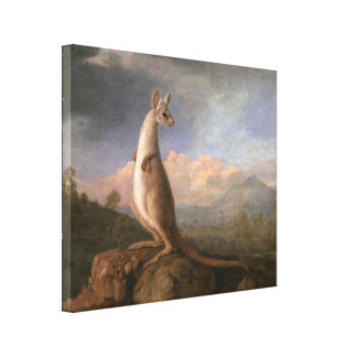 The Kongouro From New Holland by George Stubbs Canvas Print